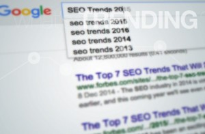 seo-trends-2016-44-experts-on-the-future-of-organic-search-success-1-720x470